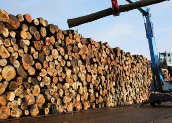 Ein Bagger arbeitet am 30.03.2016 im Nasslager des Sägewerks der Pollmeier Massivholz GmbH & Co.KG (Creuzburg) in Malchow (Mecklenburg-Vorpommern), wo die lagernden Buchen-Stämme für die längere Haltbarkeit mit Wasser besprüht werden. Der Laubholzverarbeiter nimmt sein Sägewerk in Malchow am 01.04.2016 offiziell wieder in Betrieb, nachdem es 2011 mangels Holzaufkommen und Produktnachfrage vorübergehend geschlossen wurde. Das 1999 für 29 Millionen Euro neu errichtete Werk in Malchow ist einer von drei Pollmeier-Standorten in Deutschland. Foto: Bernd Wüstneck/dpa ++ +++ dpa-Bildfunk +++