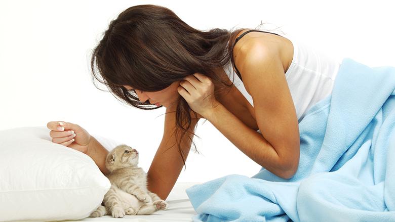 perse-macet-deshirojne-te-flene-me-njerez